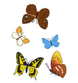 set of bright butterflies vector image