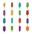 ear corn icons doodle set vector image