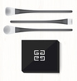 Set of two black and white brushes and powder on vector image
