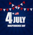 independence day in usa background can be used as vector image