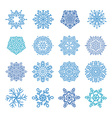 Various winter snowflakes t vector image