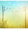 Rural Landscape Meadow vector image vector image