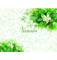 summer background with composition of branches vector image