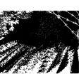 rough road vector image vector image