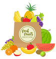 paper bag with fruits vector image