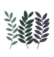 leafs decoration isolated icon design vector image