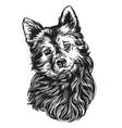 dog pet hand drawn realistic vector image