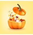 Pumpkin with eaves vector image