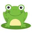 Happy Head Frog Cartoon Character vector image