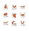 Fox icons collection for your design vector image vector image