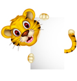 cute baby tiger posing with sign vector image vector image