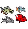 Cartoon colorful pirhana fish characters vector image vector image