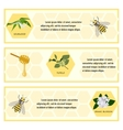 Honey set for banner vector image