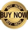 Buy Now vector image vector image