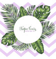 geometric background with tropical leaves vector image