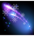 snowflakes and salute vector image vector image