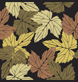 elegant seamless pattern with colorful leaves on vector image