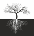 Apple tree without leaves with roots vector image vector image