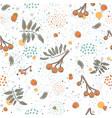 cute winter pattern with rowan berries on vector image