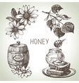 Hand drawn sketch honey set vector image