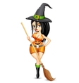 Lady in Witch costume vector image
