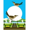 City Park Flyer vector image