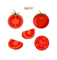 Collection of juicy tomatoes and tomato vector image