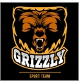 Grizzly mascot - team logo design vector image