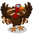 Happy turkey cartoon vector image