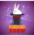 Magic hat trick show background poster vector image