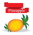 fresh pineapple on white background vector image