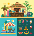Summer vacation in a tropical country vector image