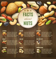 Nuts On Wooden Background vector image