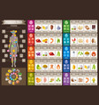 mineral vitamin food icons chart health care flat vector image