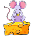 A rat eating above the big slice of cheese vector image vector image