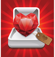 Ruby in a box Vector Image