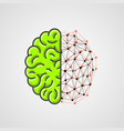 human brain with network part vector image