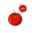 Ripe juicy tomato isolated on white background vector image