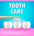 healthy human teeth and tooth brush tooth care vector image vector image