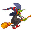 cartoon witch flying on a broom vector image