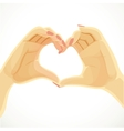 Heart folded from beautiful female hands isolated vector image vector image