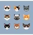 Cats heads in flat style vector image