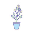coins plant and cash money currency vector image