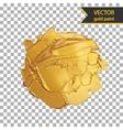 Gold shiny metallic brush stroke Golden design vector image