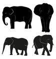 Decorative ornamental elephants silhouette vector image