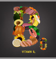 vitamin b6 foods vector image