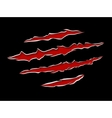 Claws damage metal vector image