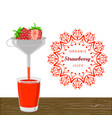 the theme strawberry vector image