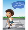 Boy crossing the road using zebra crossing vector image