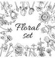 vintage monochrome blossom flowers set vector image